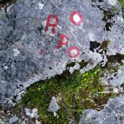 Staza kameni stupi 27.06.2020.